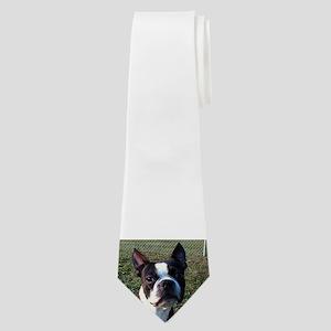 boston terrier Neck Tie