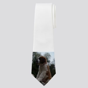 saint bernard sitting 3 Neck Tie