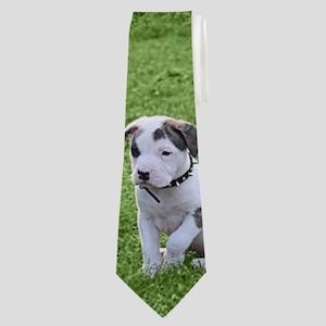 Pit Bull T-Bone Puppy Neck Tie