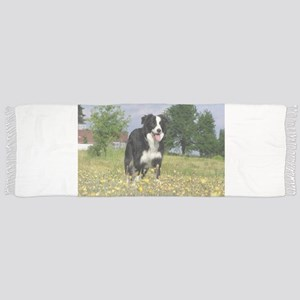 full 3 border collie Tassel Scarf