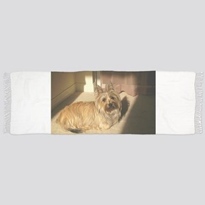 cairn terrier laying Tassel Scarf