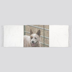 australian cattle dog red Scarf