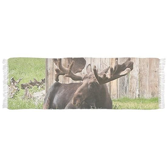 Sitting moose, Alaska, USA