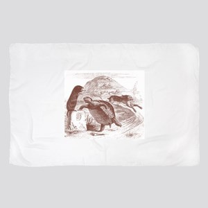 Tortoise and the Hare Sheer Scarf