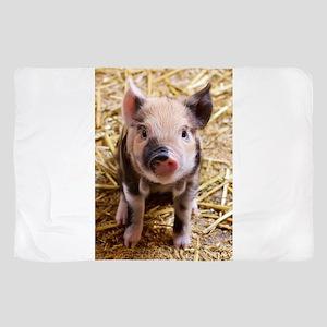 Pig Sheer Scarf