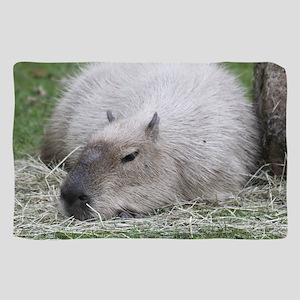 Capybara 215 A Scarf