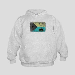 Vintage Grunge Acadian Flag Sweatshirt