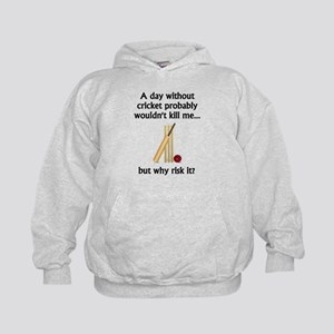 A Day Without Cricket Hoody