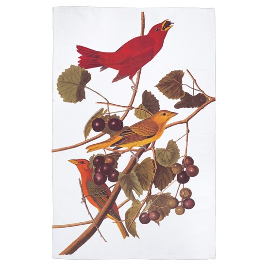Summer Red Bird Vintage Audubon