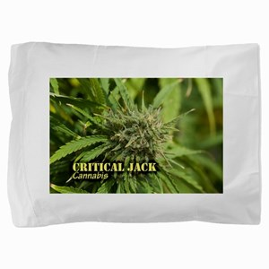 Critical Jack (with name) Pillow Sham
