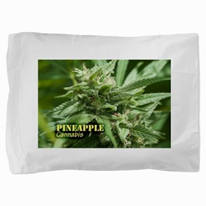 Pineapple (with name) Pillow Sham