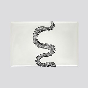 Snake Rectangle Magnet