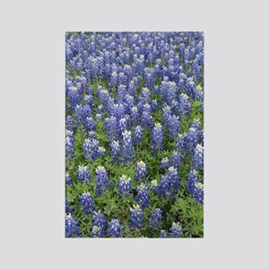 Field of Bluebonnets Rectangle Magnet