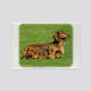 Dachshund 8R020D-05 Rectangle Magnet