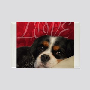 Cavalier King charles Spaniel Love Magnets