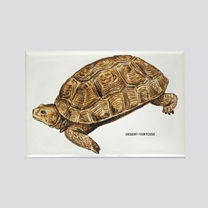 Desert Tortoise Rectangle Magnet