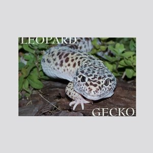 Leopard Gecko Rectangle Magnet
