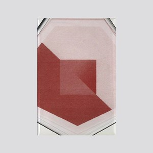 Red and Pink Otagon Rectangle Magnet