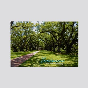 Louisiana Plantation Rectangle Magnet Magnets