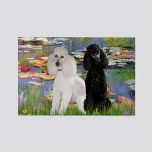Lilies / 2 Poodles(b&w) Rectangle Magnet