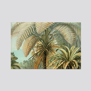 Vintage Tropical Palm Magnets