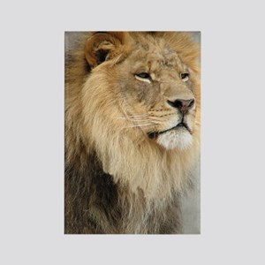 Lion Lovers Rectangle Magnet
