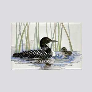 Loon and baby Rectangle Magnet