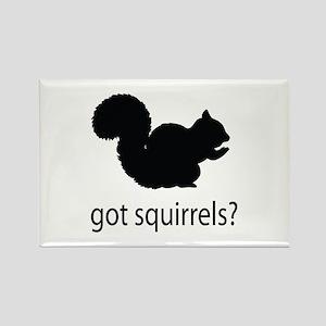 Got squirrels? Rectangle Magnet