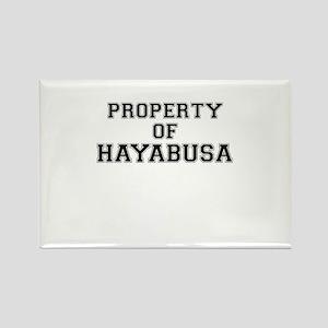 Property of HAYABUSA Magnets