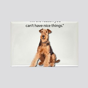 Airedales: Why you can't have nice things Magnets