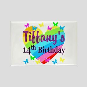 14TH BIRTHDAY Rectangle Magnet