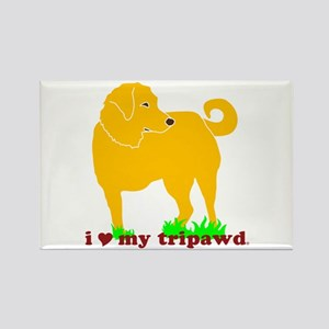 Golden Tripawd Love Rectangle Magnet
