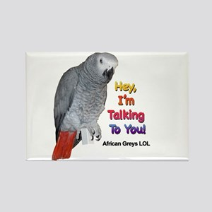 Hey, I'm talking to you! LOL Rectangle Magnet