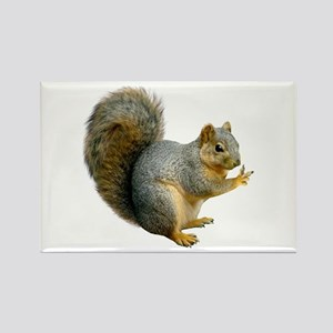 Peace Squirrel Rectangle Magnet