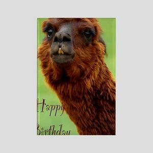 funny alpaca birthday Rectangle Magnet