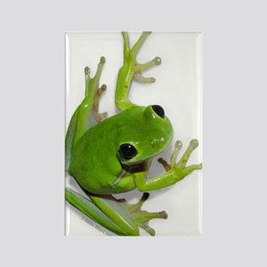 Tree Frog - Rectangle Magnet