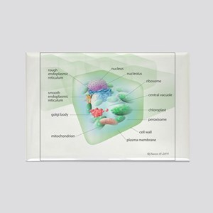 Plant Cell Rectangle Magnet