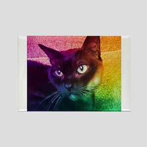 Burmese Cat Portrait B Rectangle Magnet