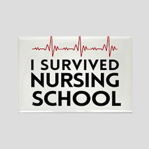 I survived nursing school Magnets