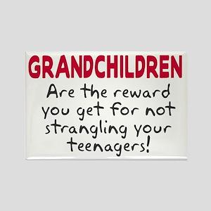 Grandchildren Reward Rectangle Magnet