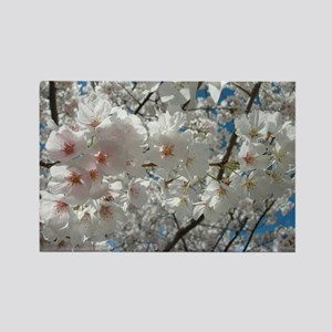 Cherry Blossoms 10 Rectangle Magnet