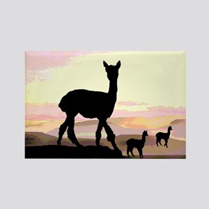 Sunset Hills Alpacas Rectangle Magnet