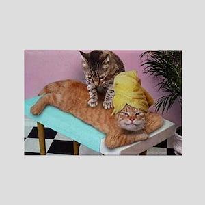 Funny Cat Massage Magnets