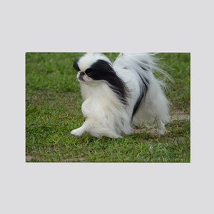 Japanese Chin Puppy Rectangle Magnet