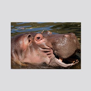 Happy Hippo Rectangle Magnet