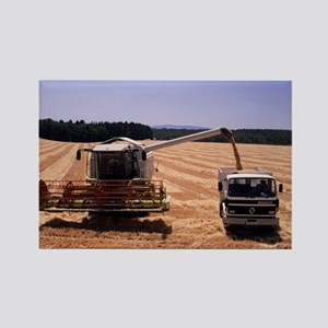 Wheat harvest - Rectangle Magnet (10 pk) Magnets