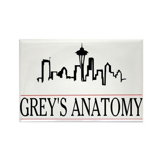 Grey's anatomy-skyline