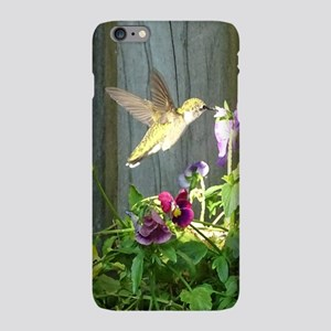 Pansy Hummingbird iPhone Plus 6 Slim Case