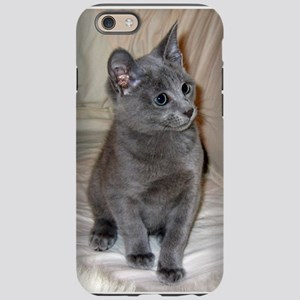 russian blue kitten iPhone 6/6s Tough Case