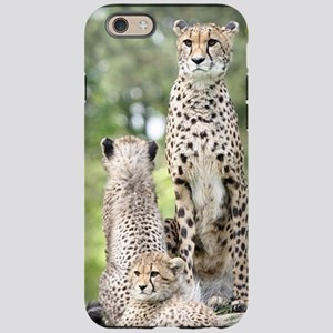 Cheetah002 iPhone 6 Tough Case